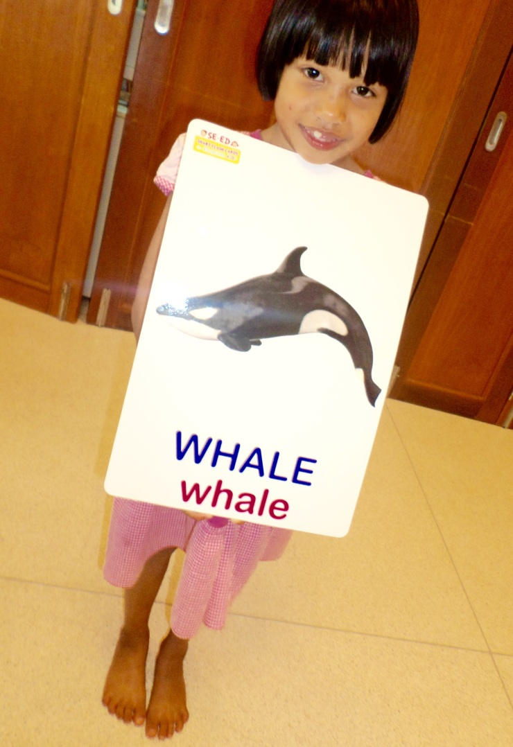 This is a whale of a flashcard but nothing our girl JJ can't handle.